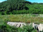 2012타경1910 - 홍성지원 [농사시설] 충청남도 홍성군 서부면 중리 494 - 부동산미래
